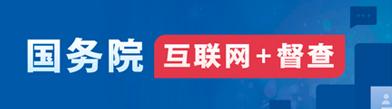 互联网+督查