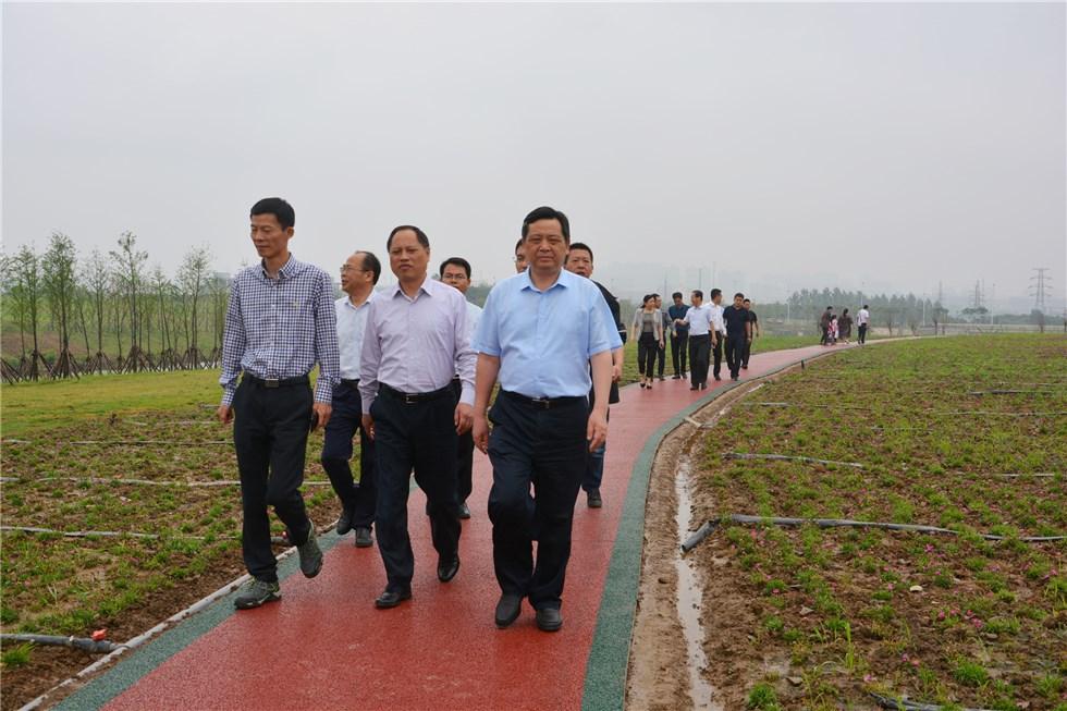 陶方启在调研城市建设项目时强调:加快重点项目建设 提升城市品质功能