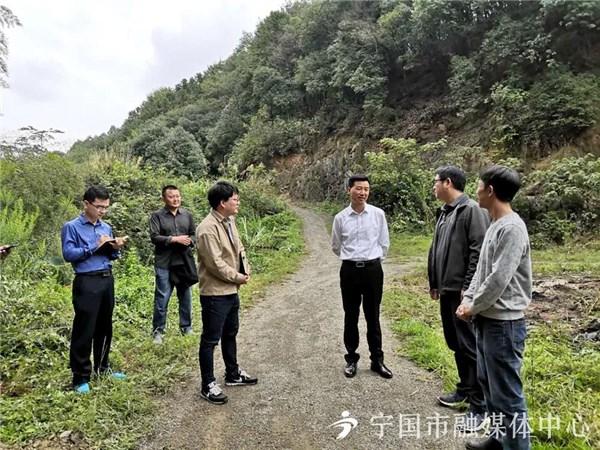 何田督导河长制、林长制、生态环境整改工作
