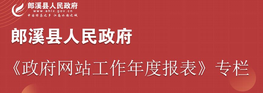 郎溪縣人民政府網站年度工作報表