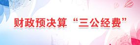 """财政预决算""""三公经费"""""""