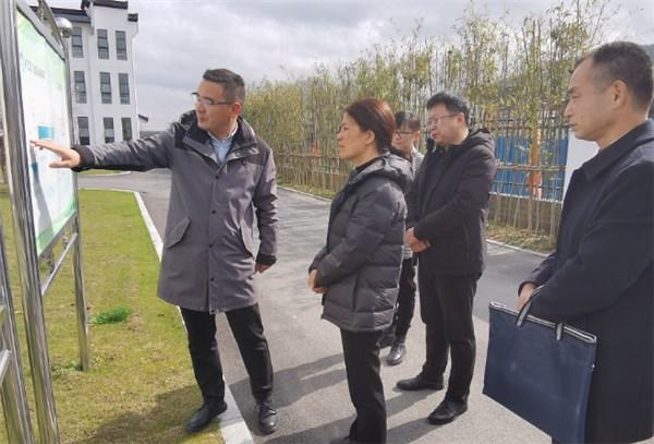 吴忠梅调研突出生态环境问题整改工作