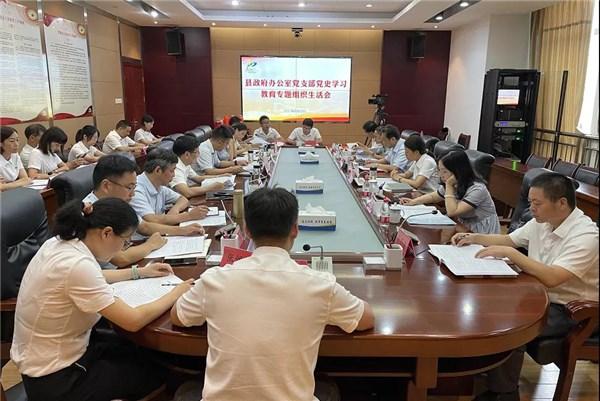 吴忠梅参加县政府办党支部党史学习教育专题组织生活会